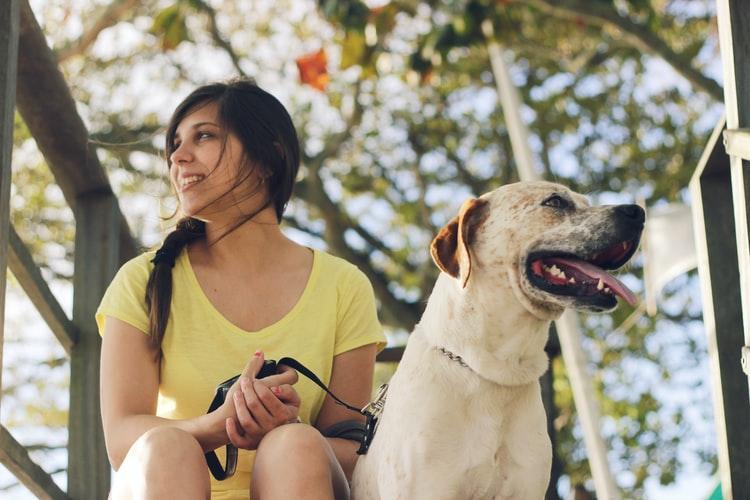 dog-companionship